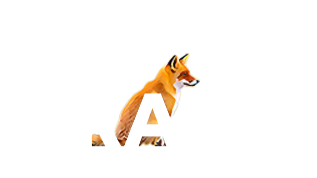 GEOGRAMS Co., Ltd